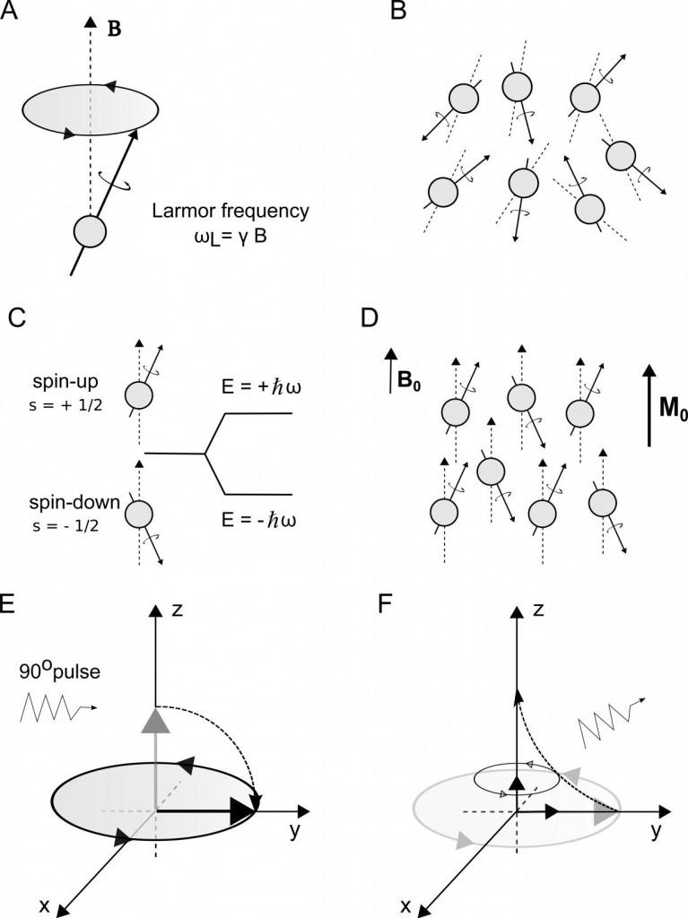 Figure 1: Nuclear Magnetic Resonance (NMR).